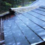 屋根に降りつける雨
